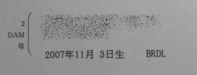 1103_0001_4